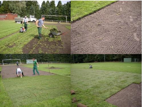 Garten Landschaftsbau Fam Heyn Rasenpflege Rollrasen
